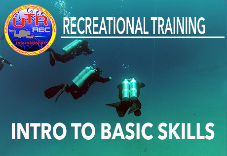 INTRO TO BASIC SKILLS